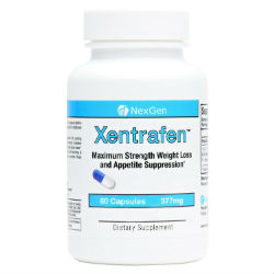 Xentrafen review